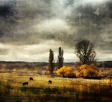 Autumn on the Monaro by Jan Glover