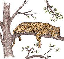 leopard resting by artbyjehf