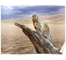 Great Sand Dunes Log Poster