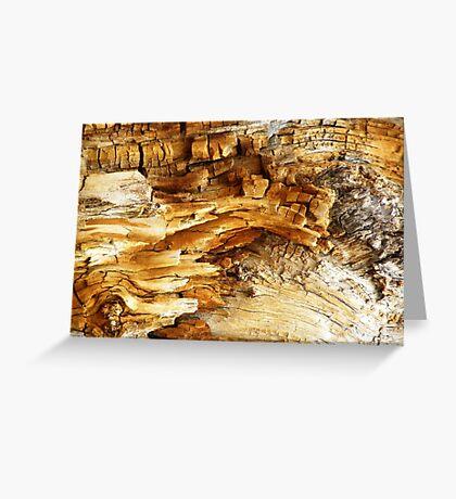 Decaying Log Greeting Card