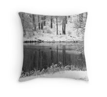 A Snowy Scene Throw Pillow