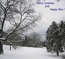 Merry Cristmas and Happy New Year!... by sendao