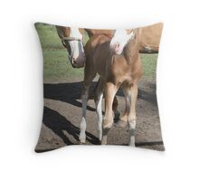 Mummy and Me Throw Pillow