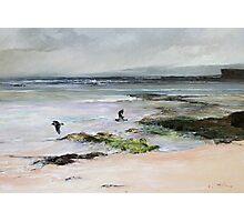 Oyster Catchers - Seascape South Eastern South Australia Photographic Print