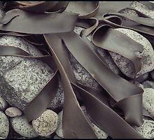 Kelp Abstract -01 by Albert Sulzer