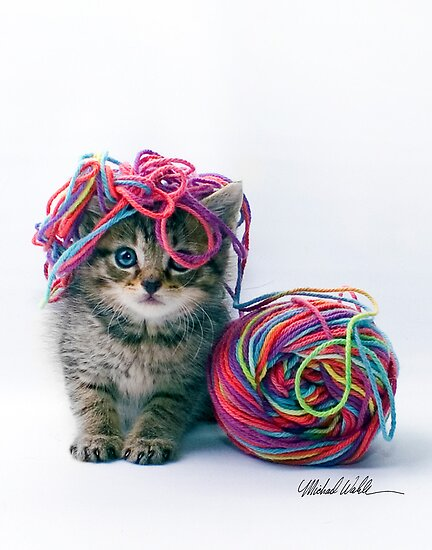 Yarn Hat by Michael Wahlers