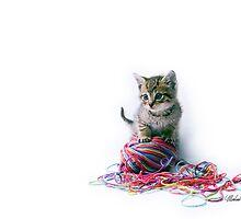 MY yarn ball! by Michael Wahlers