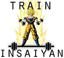 train insaiyan by kurticide