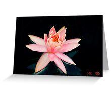 Pink Water Lily  - Sydney Royal Botanic Gardens, NSW Greeting Card