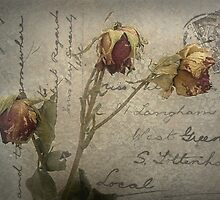 Postcard from the Past ~ No 4 by Rosalie Dale