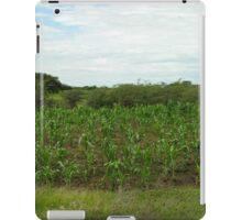 an incredible Tanzania landscape iPad Case/Skin