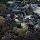 Buckley Falls Geelong by Margaret Metcalfe