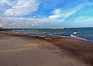The Beachs of Presque Isle by Kathy Weaver