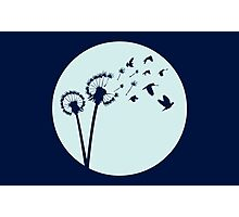 Dandelion Bird Flight Photographic Print
