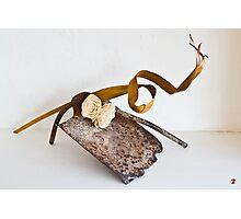 Ikebana-146 Photographic Print