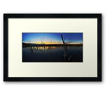Beachmere swamp Framed Print