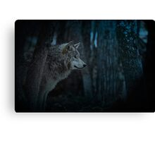 Night Visitor 3 - Psuedo Night Shot PS3 Canvas Print