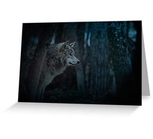 Night Visitor 3 - Psuedo Night Shot PS3 Greeting Card