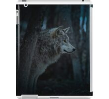 Night Visitor 3 - Psuedo Night Shot PS3 iPad Case/Skin