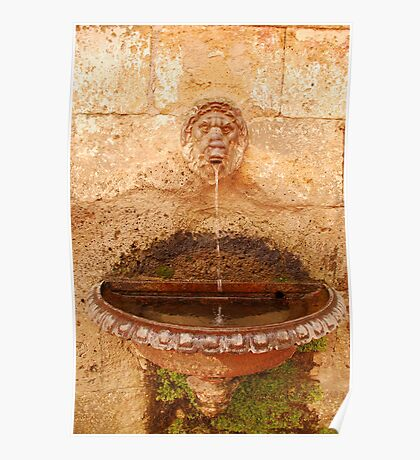 Drinking Water Fountain Poster