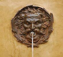 Water Fountain in Pitigliano, Tuscany  by jojobob