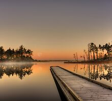 Stillness by Randall Scholten