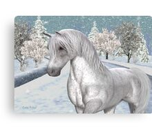 Winter Snow .. the tale of a wild horse Canvas Print