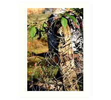 barbed wire post Art Print