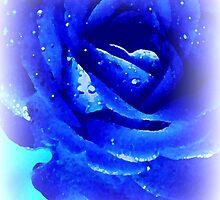 Blue Rose Dreams by Lori Worsencroft