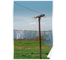 Washing on Clothes Line  Poster