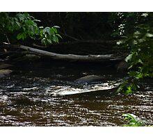 The Ware River, Ware Ma Photographic Print