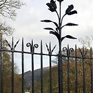 Traquair House Wrought Iron Fence Flowers by rosie320d