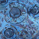 Blue Hydrant 2 by Tama Blough