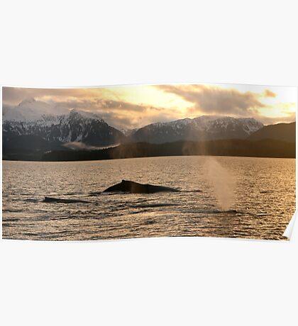 Autumn Whale Blows Poster