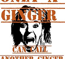 Only a ginger by Christina James