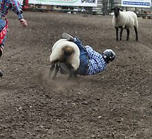 Cochrane Lions Rodeo #2, 2009, Canada. by Felicity McLeod