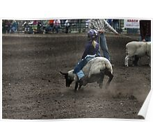Cochrane Lions Rodeo #5, 2009, Canada. Poster