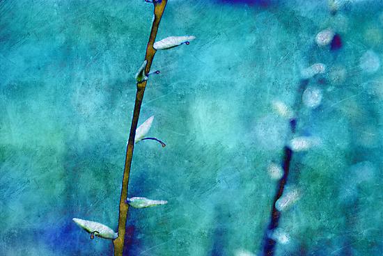aqua and indigo by Aimelle