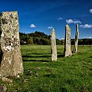 The Standing Stones by Kathy Weaver