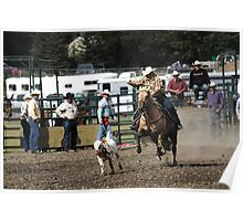 Cochrane Lions Rodeo #15, 2009, Canada. Poster