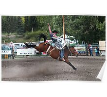 Cochrane Lions Rodeo #17, 2009, Canada. Poster