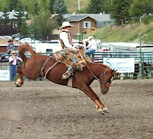 Cochrane Lions Rodeo #20, 2009, Canada. by Felicity McLeod