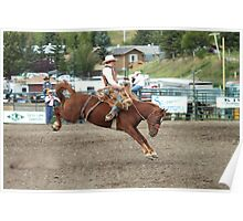 Cochrane Lions Rodeo #20, 2009, Canada. Poster