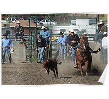 Cochrane Lions Rodeo #25, 2009, Canada. Poster
