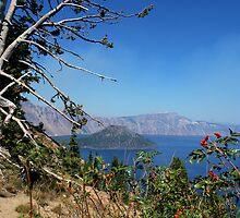 Crater Lake, Oregon by Marita Sutherlin