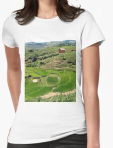 an amazing Madagascar