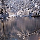 Reflections of Winter by Monica M. Scanlan