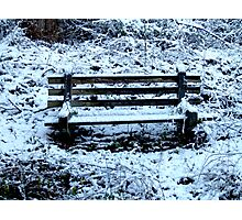 The Bench in Snow Photographic Print