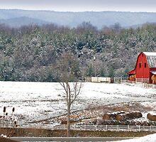 Christmas at Rural Retreat by susi lawson