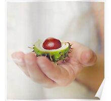 Conkers Poster